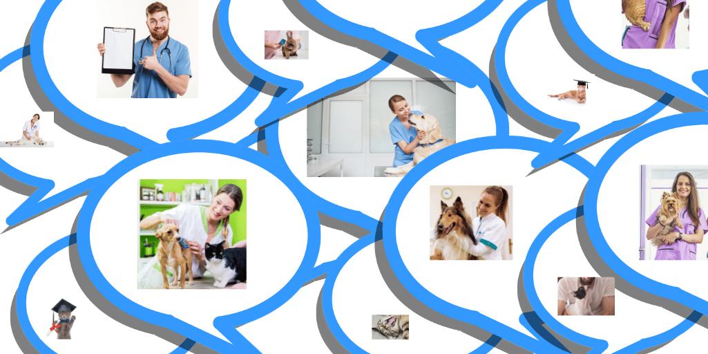 Quels sont les avantages d'un vétérinaire ?